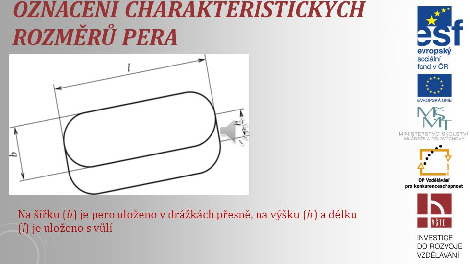 Označení charakteristických rozměrů pera