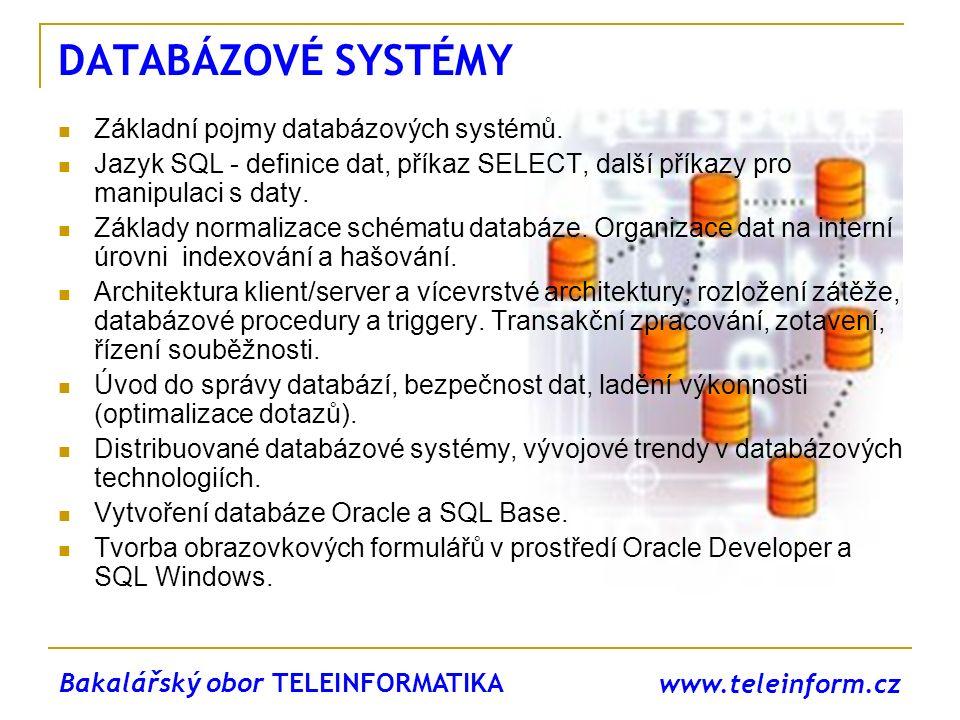 DATABÁZOVÉ SYSTÉMY Základní pojmy databázových systémů.