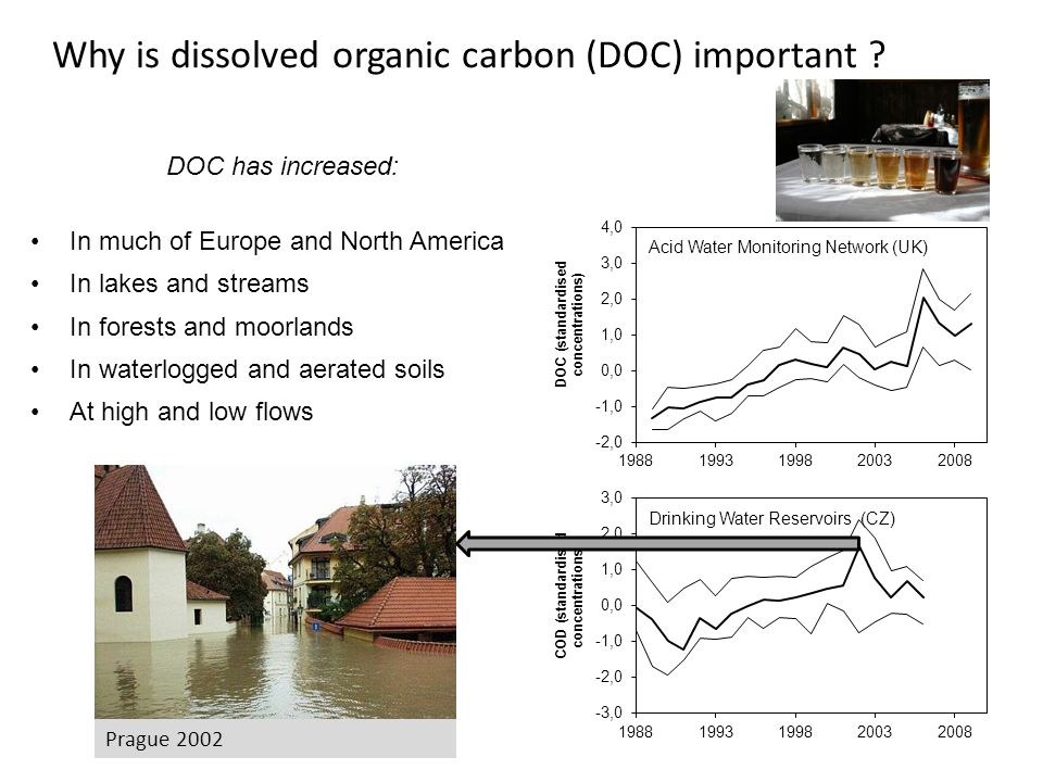 Why is dissolved organic carbon (DOC) important