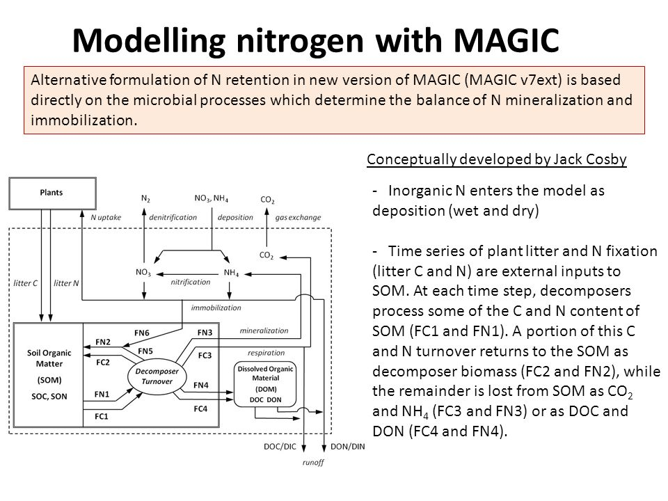 Modelling nitrogen with MAGIC