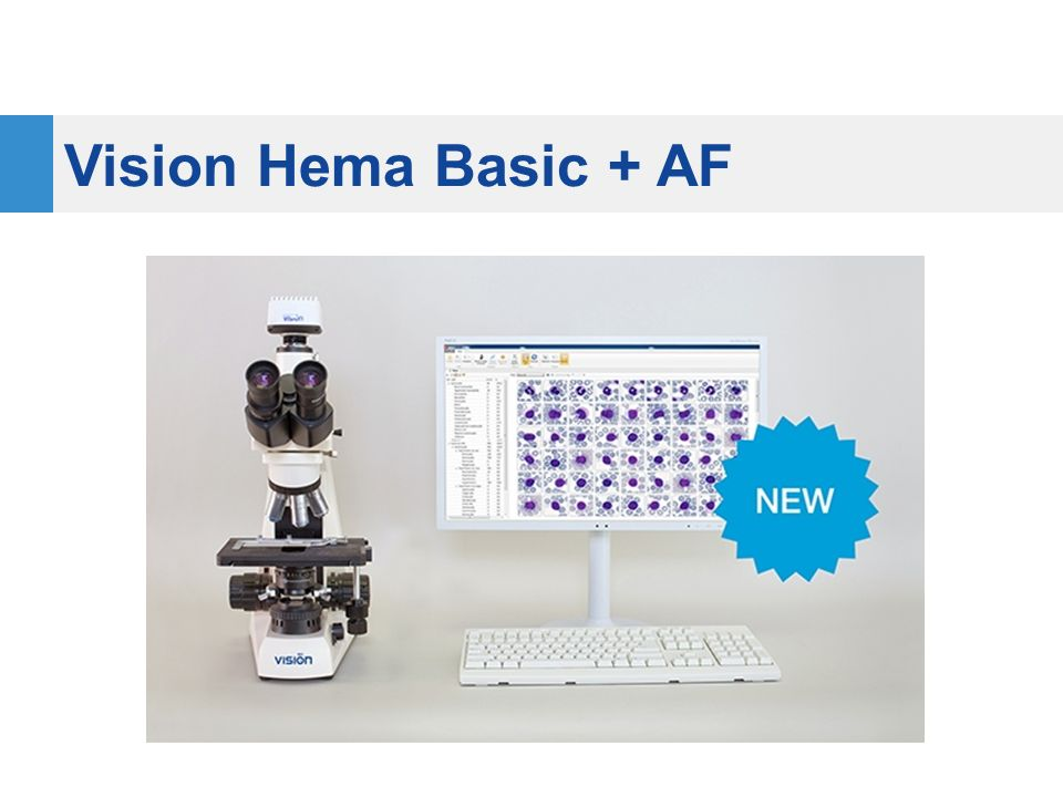 Vision Hema Basic + AF