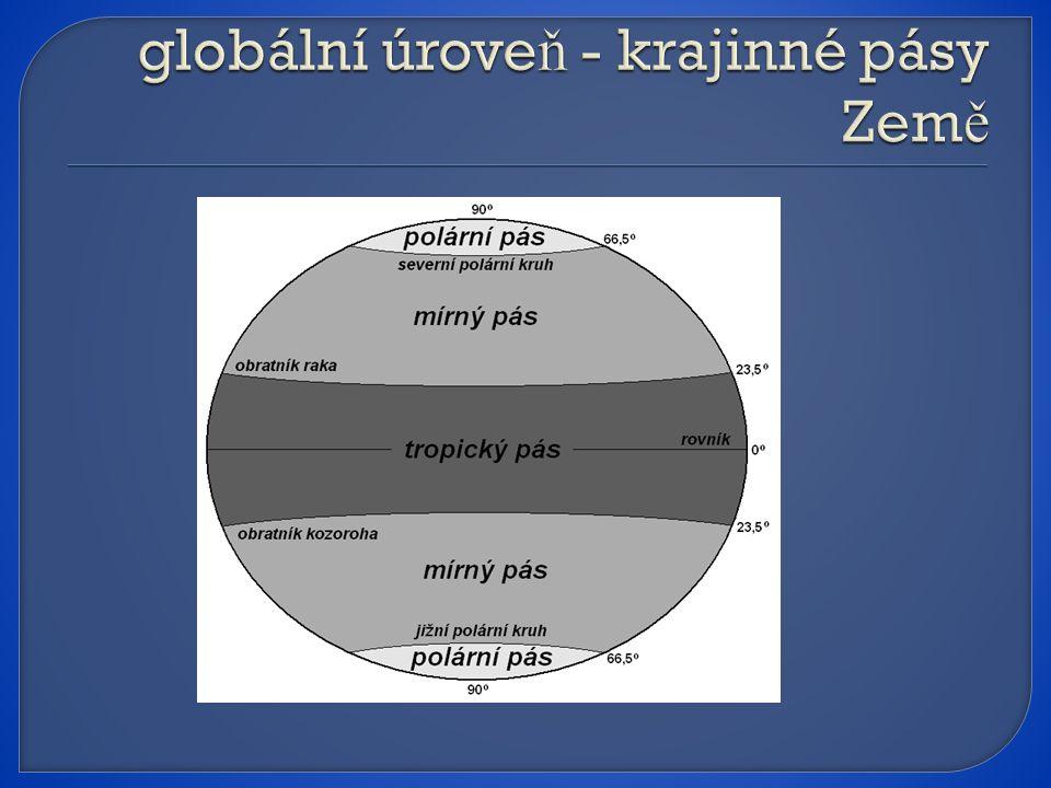 globální úroveň - krajinné pásy Země