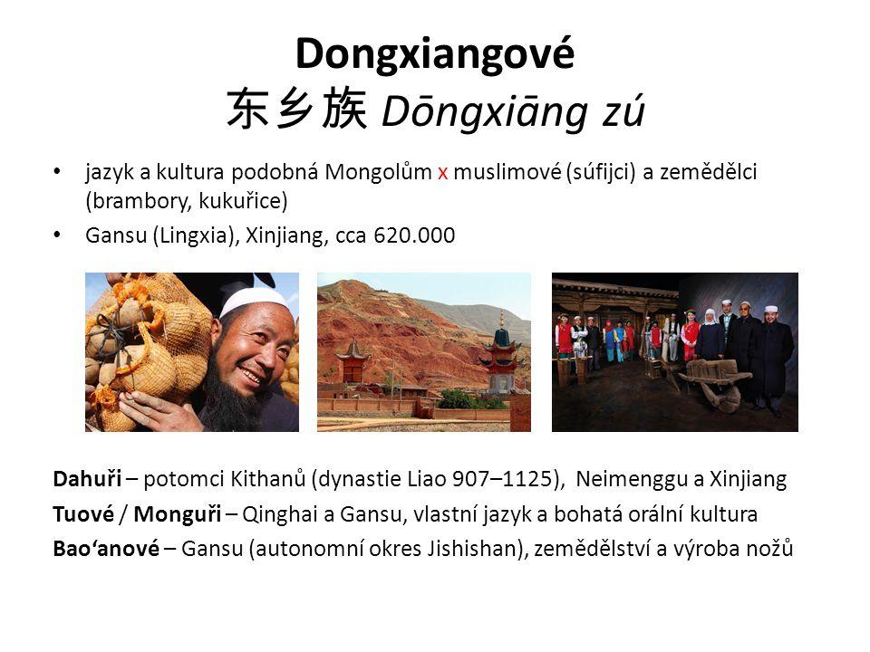 Dongxiangové 东乡族 Dōngxiāng zú