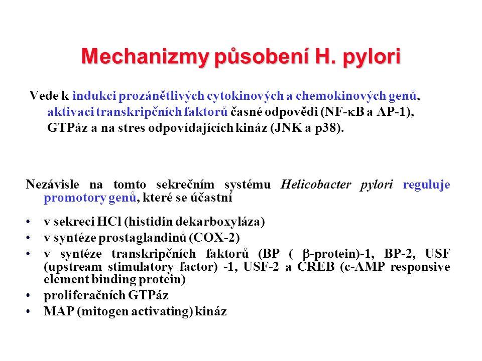 Mechanizmy působení H. pylori