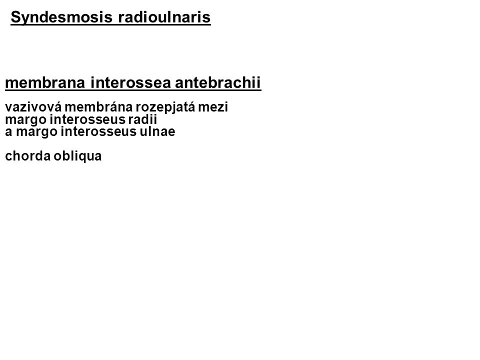 Syndesmosis radioulnaris membrana interossea antebrachii