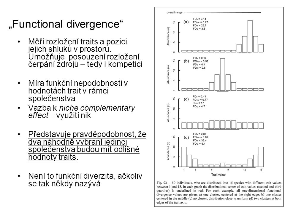 """""""Functional divergence"""