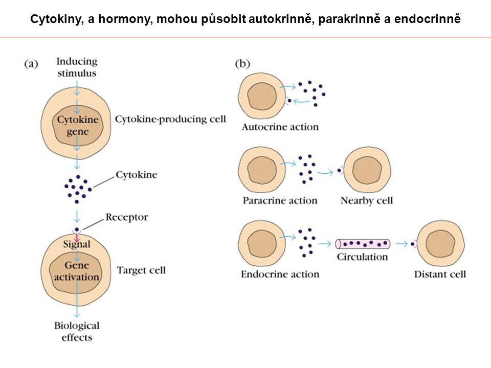 Cytokiny, a hormony, mohou působit autokrinně, parakrinně a endocrinně