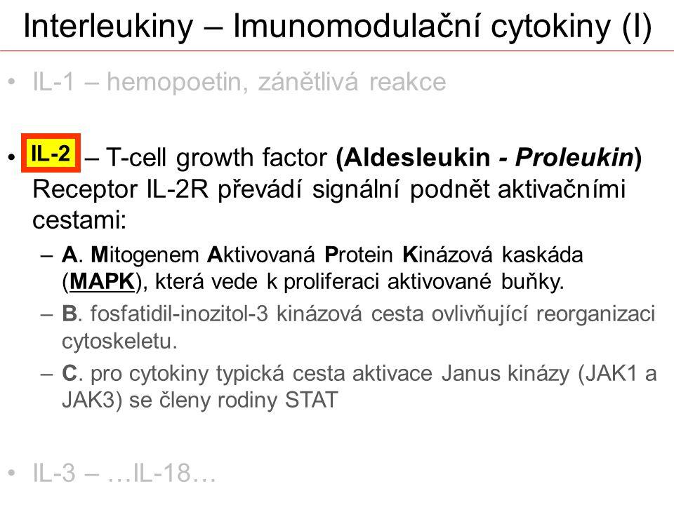 Interleukiny – Imunomodulační cytokiny (I)