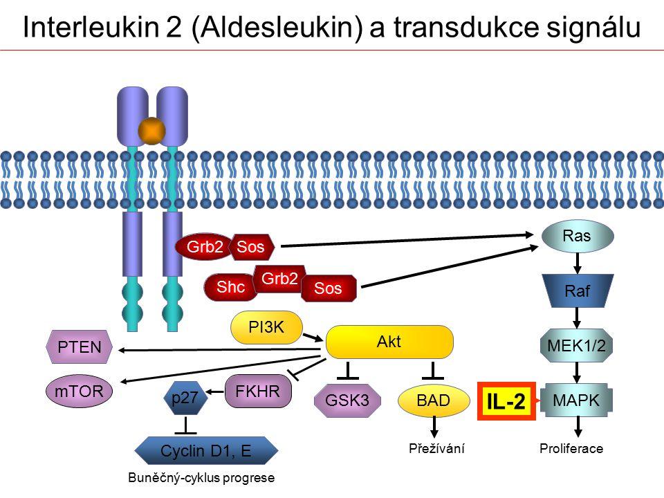 Interleukin 2 (Aldesleukin) a transdukce signálu