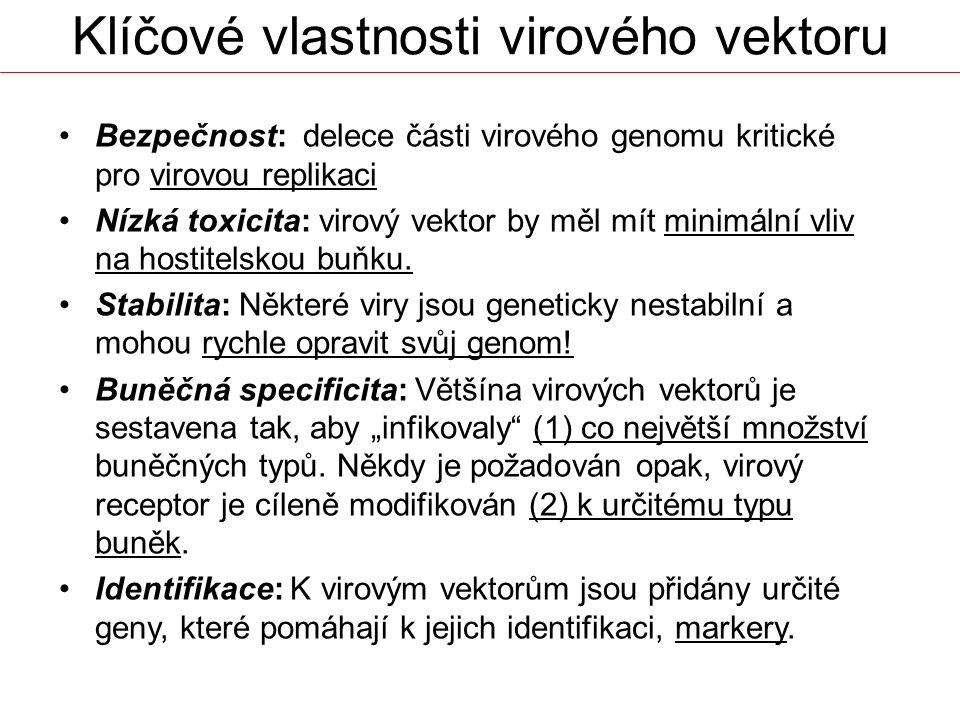 Klíčové vlastnosti virového vektoru