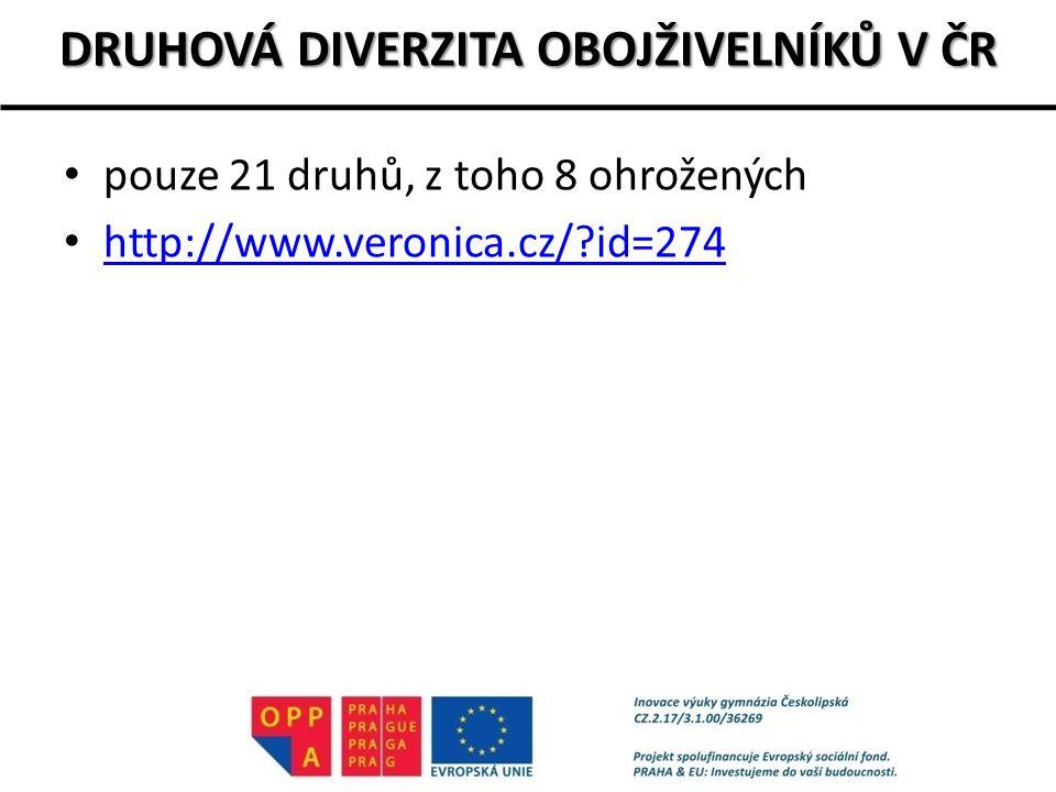 DRUHOVÁ DIVERZITA OBOJŽIVELNÍKŮ V ČR