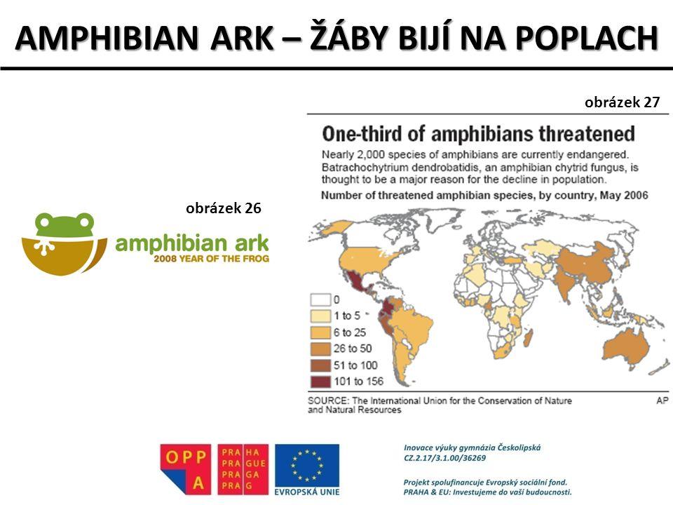 AMPHIBIAN ARK – ŽÁBY BIJÍ NA POPLACH