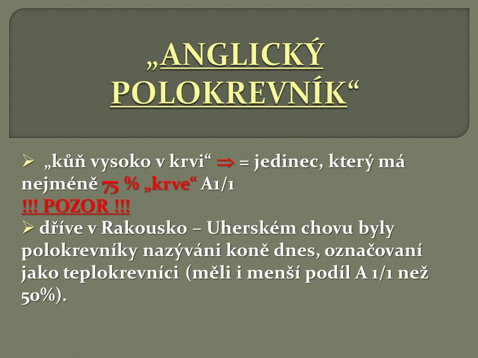 """ANGLICKÝ POLOKREVNÍK"