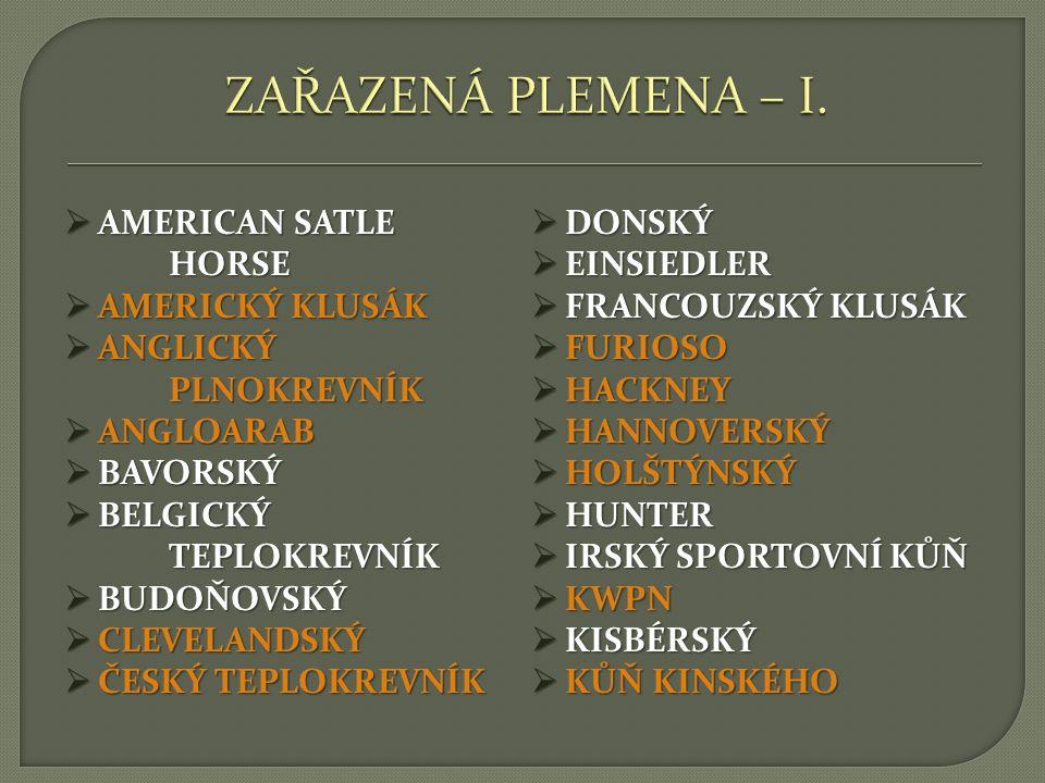 ZAŘAZENÁ PLEMENA – I. AMERICAN SATLE HORSE DONSKÝ EINSIEDLER