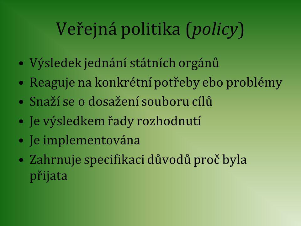 Veřejná politika (policy)