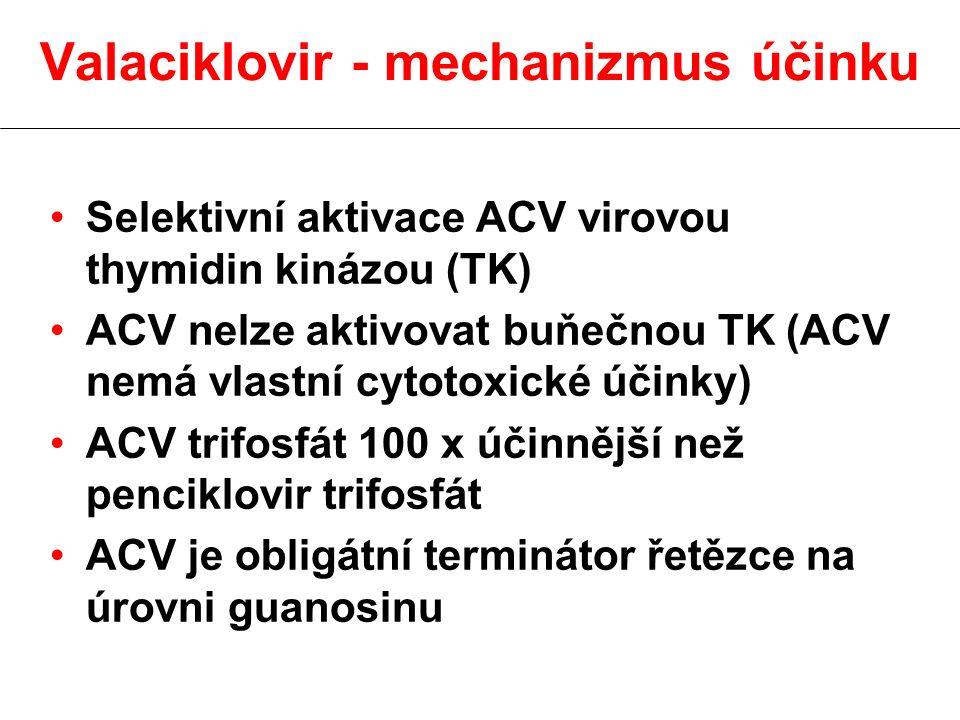 Valaciklovir - mechanizmus účinku