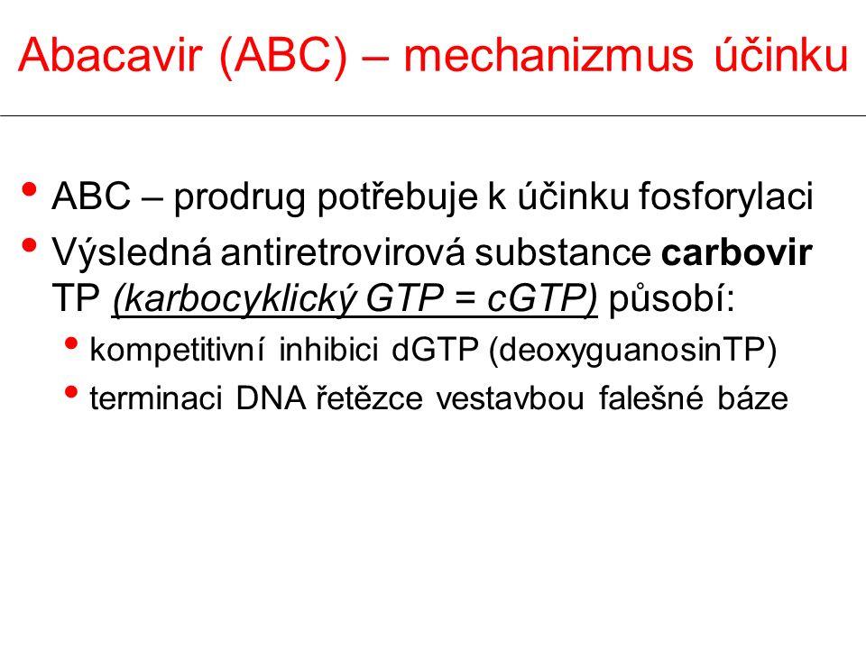 Abacavir (ABC) – mechanizmus účinku