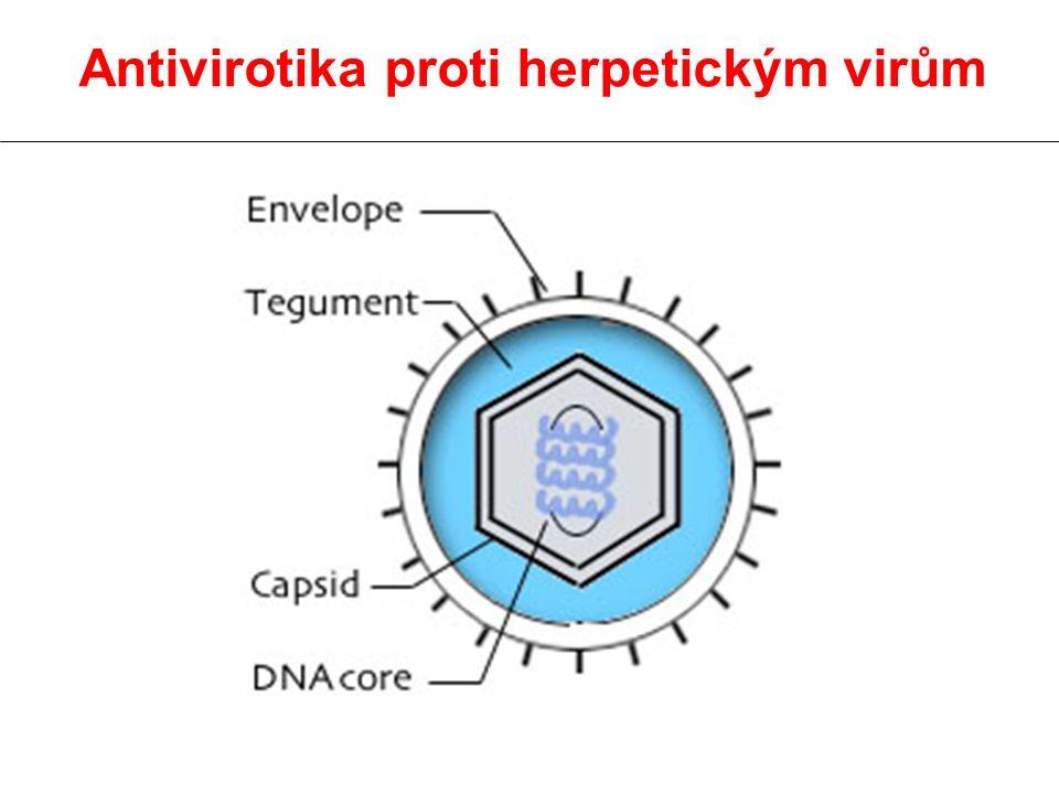 Antivirotika proti herpetickým virům