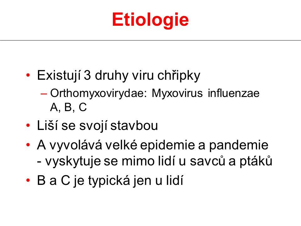 Etiologie Existují 3 druhy viru chřipky Liší se svojí stavbou