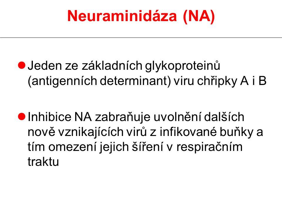 Neuraminidáza (NA) Jeden ze základních glykoproteinů (antigenních determinant) viru chřipky A i B.