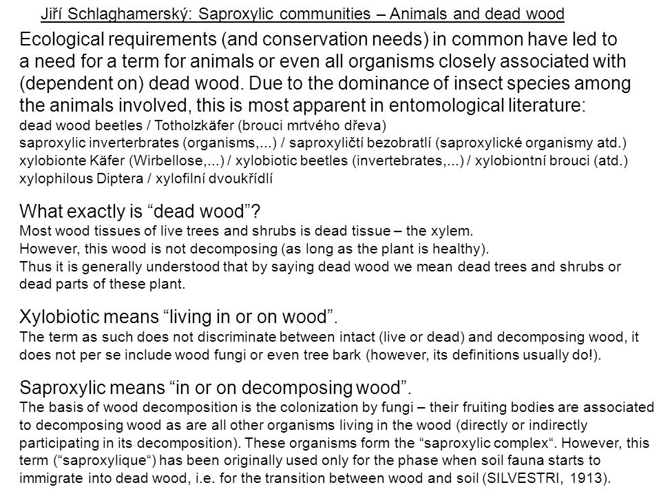 Jiří Schlaghamerský: Saproxylic communities – Animals and dead wood
