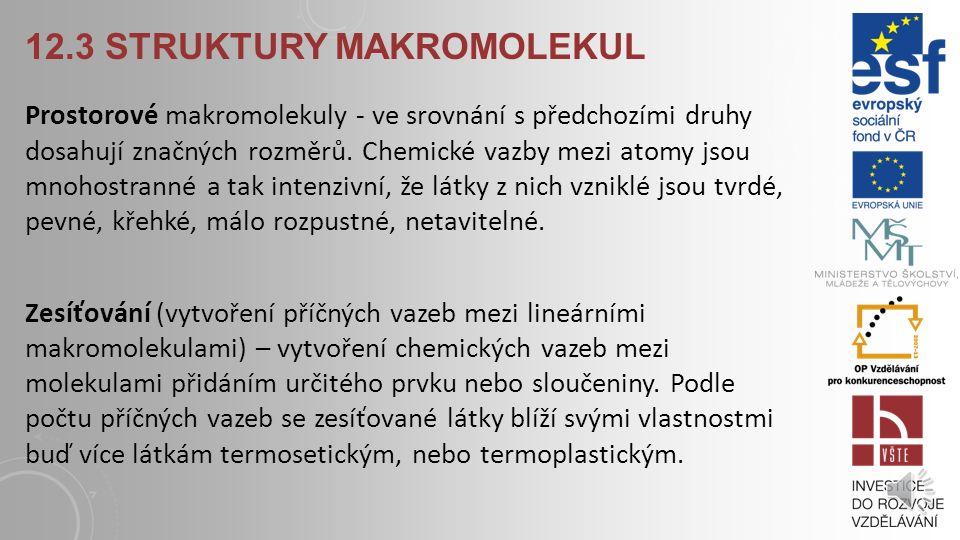 12.3 Struktury makromolekul