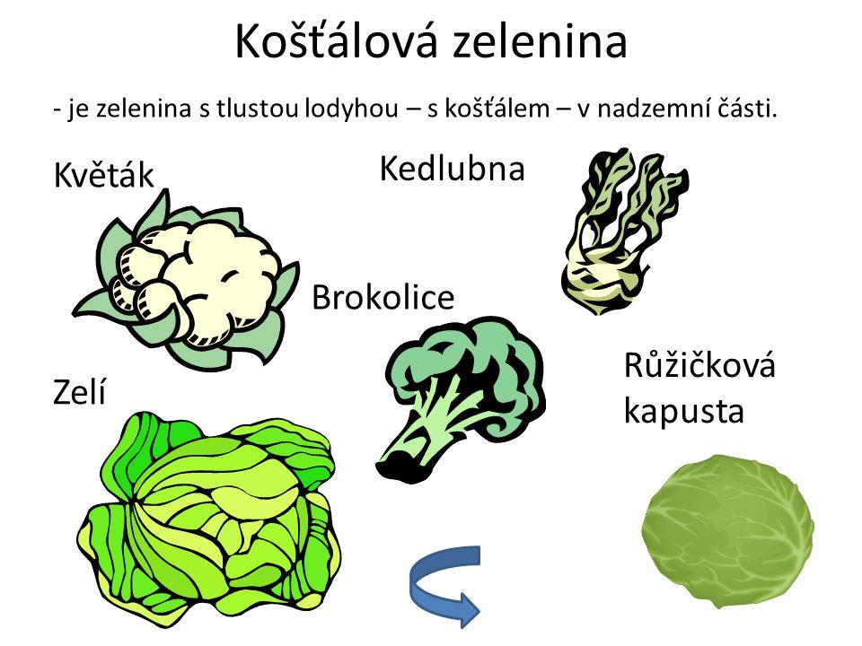 Košťálová zelenina Kedlubna Květák Brokolice Růžičková kapusta Zelí
