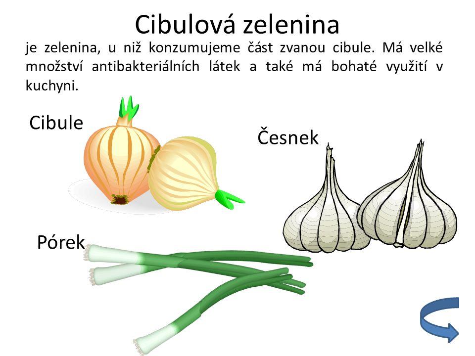 Cibulová zelenina Cibule Česnek Pórek
