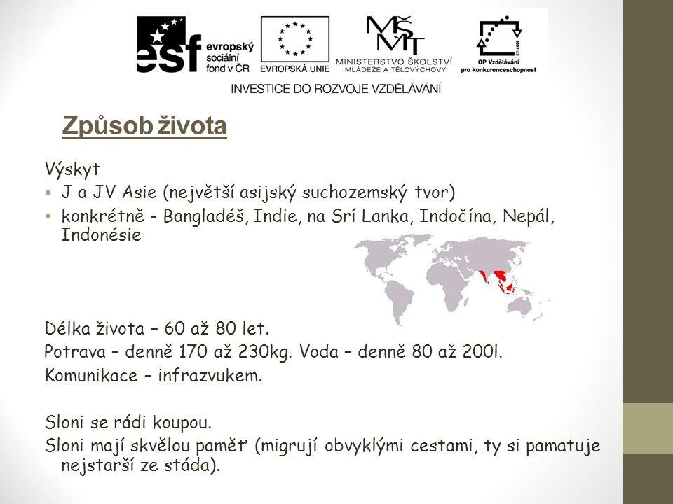 Způsob života Výskyt J a JV Asie (největší asijský suchozemský tvor)