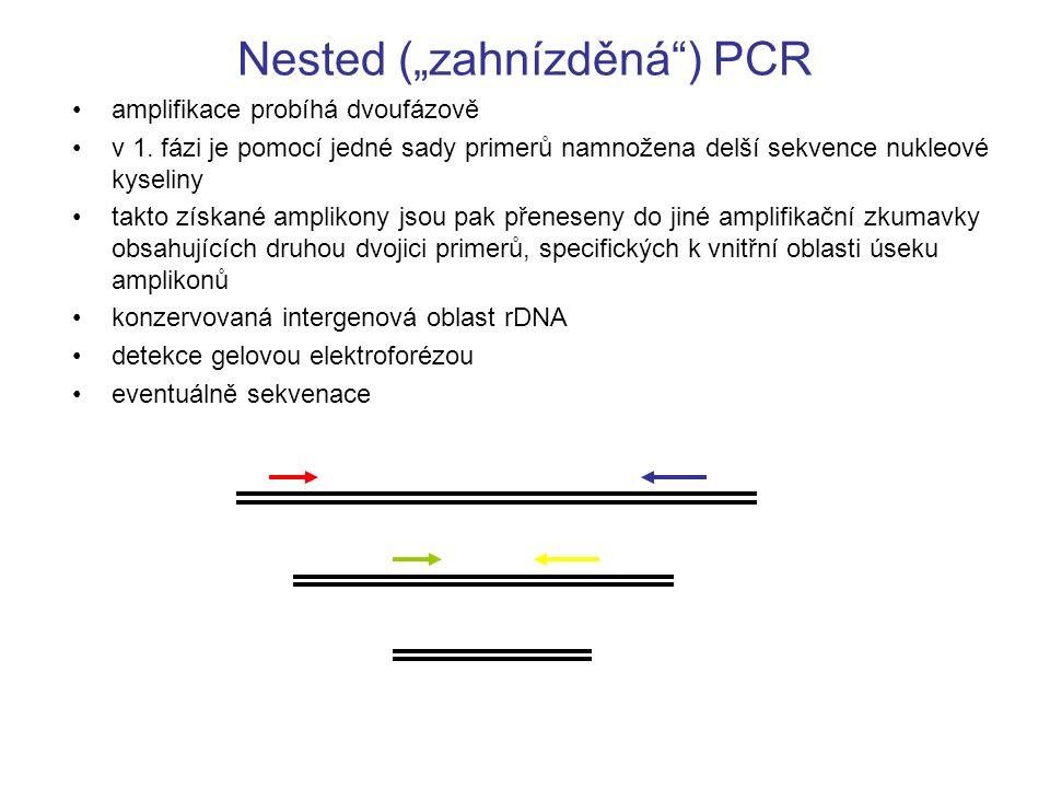 """Nested (""""zahnízděná ) PCR"""