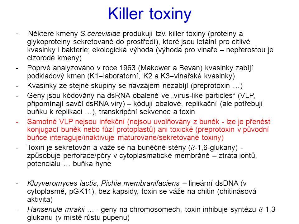 Killer toxiny