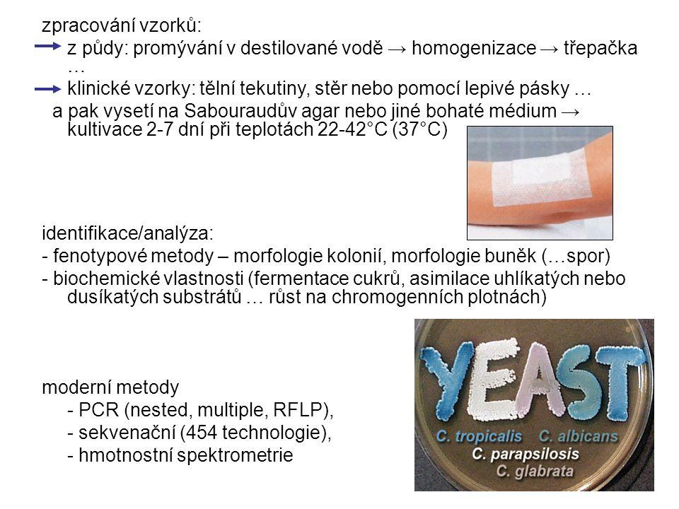 zpracování vzorků: z půdy: promývání v destilované vodě → homogenizace → třepačka … klinické vzorky: tělní tekutiny, stěr nebo pomocí lepivé pásky …