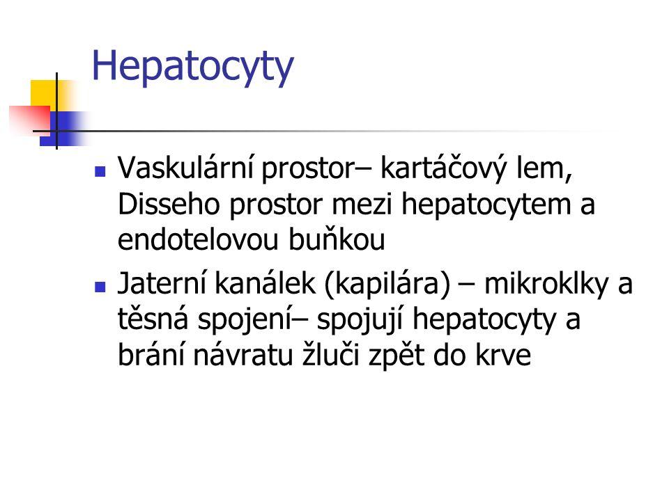 Hepatocyty Vaskulární prostor– kartáčový lem, Disseho prostor mezi hepatocytem a endotelovou buňkou.