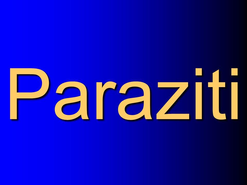 Paraziti