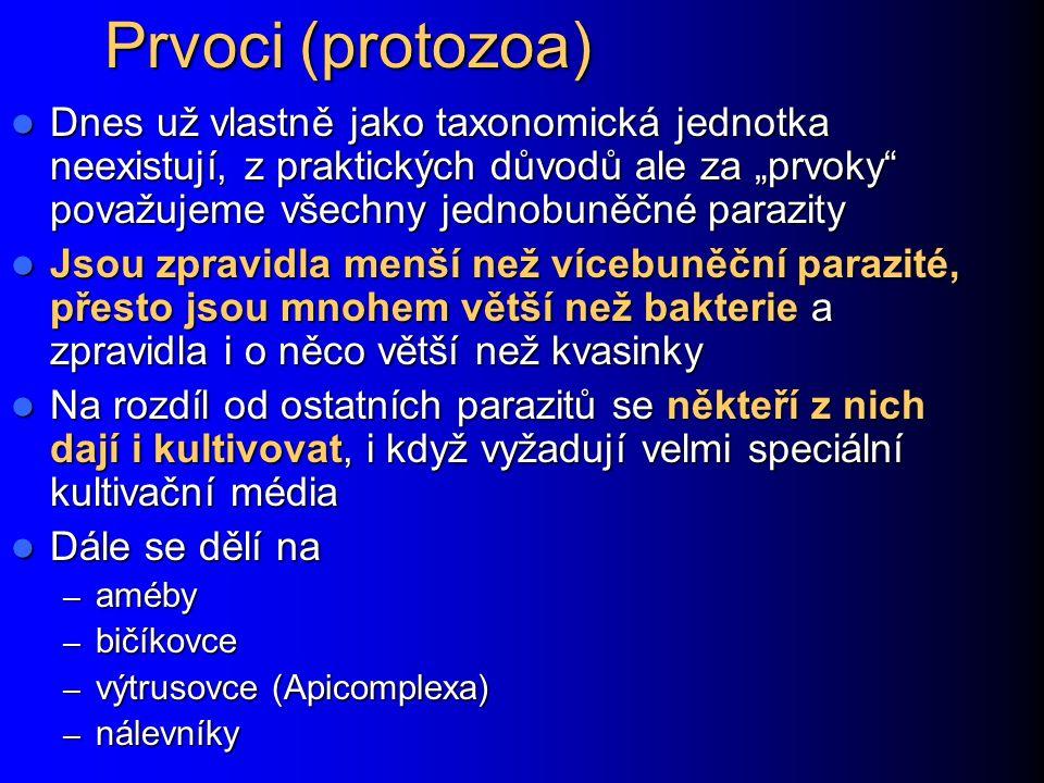"""Prvoci (protozoa) Dnes už vlastně jako taxonomická jednotka neexistují, z praktických důvodů ale za """"prvoky považujeme všechny jednobuněčné parazity."""
