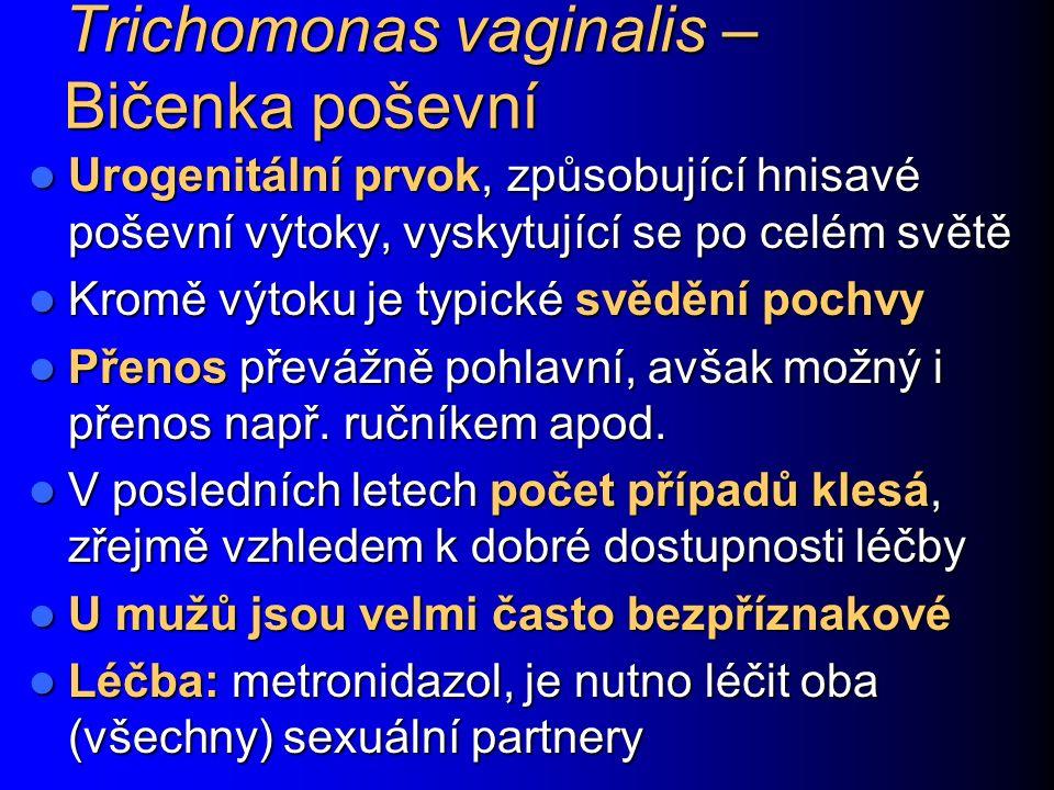 Trichomonas vaginalis – Bičenka poševní