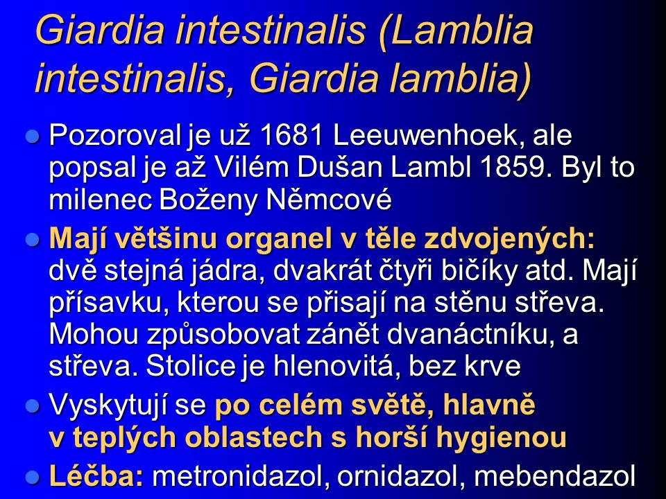 Giardia intestinalis (Lamblia intestinalis, Giardia lamblia)