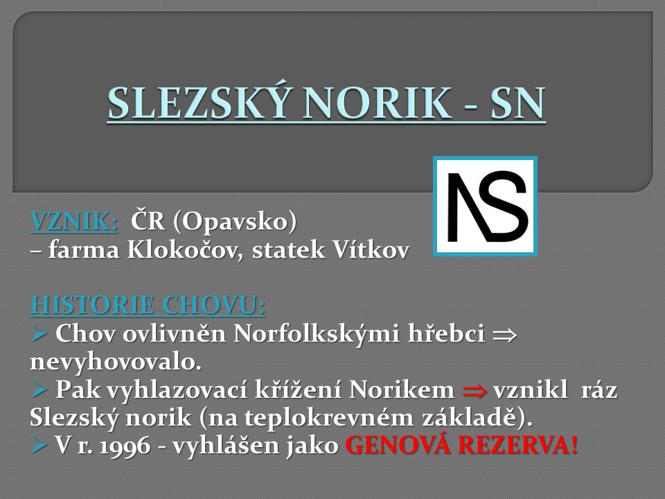 SLEZSKÝ NORIK - SN VZNIK: ČR (Opavsko) – farma Klokočov, statek Vítkov