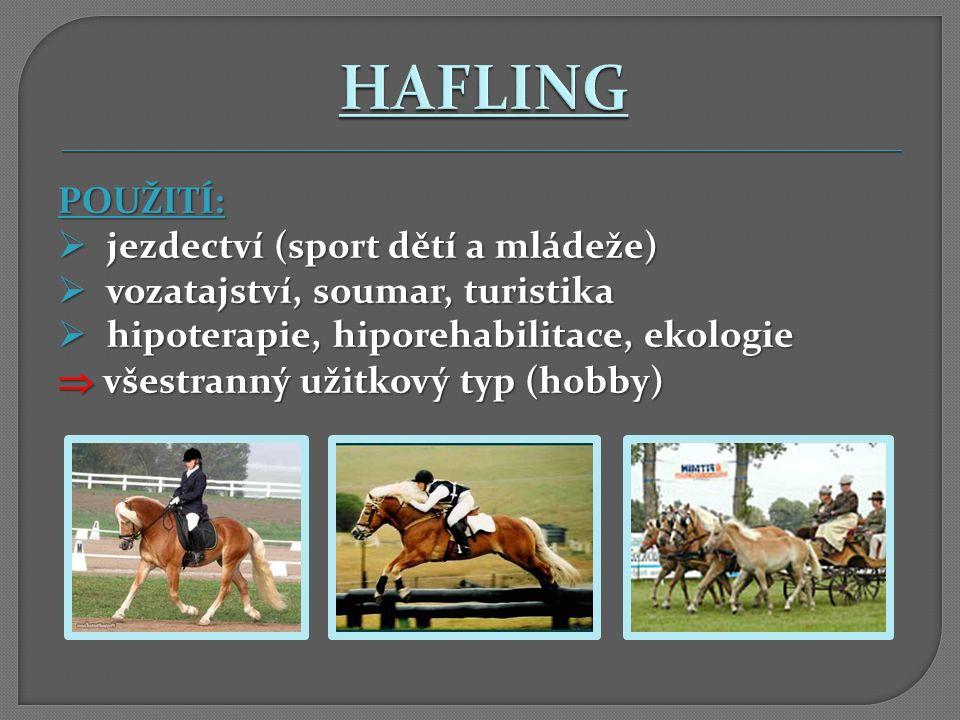 HAFLING POUŽITÍ: jezdectví (sport dětí a mládeže)