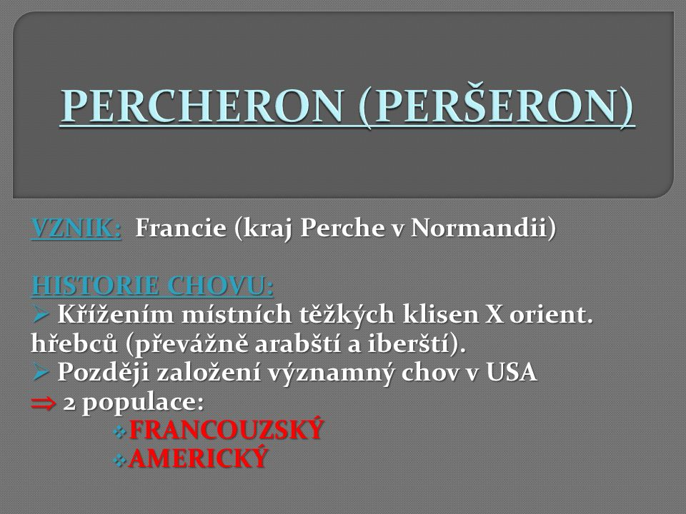 PERCHERON (PERŠERON) VZNIK: Francie (kraj Perche v Normandii)