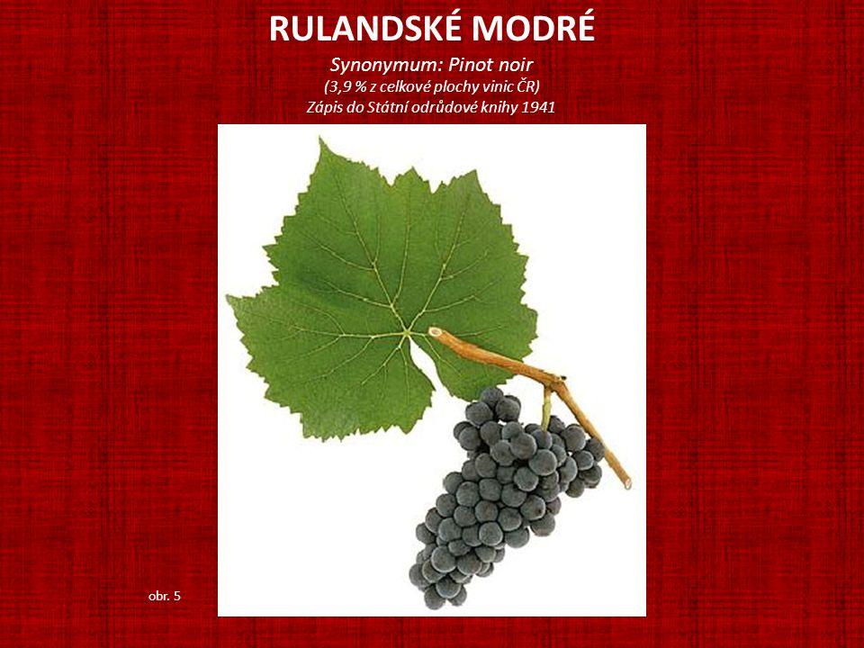 RULANDSKÉ MODRÉ Synonymum: Pinot noir