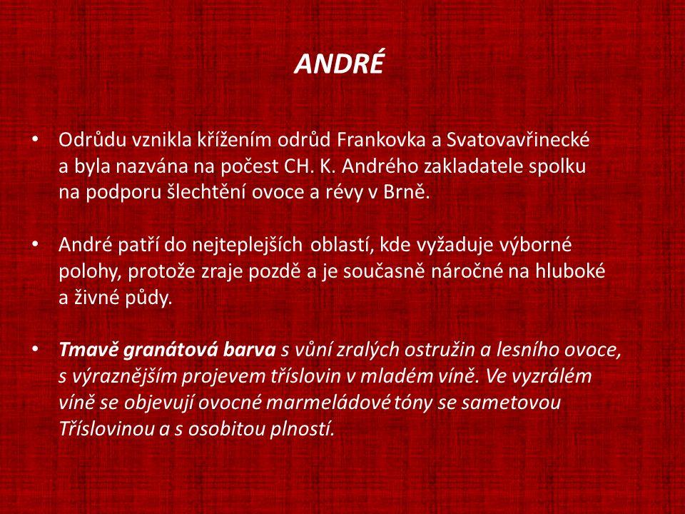 ANDRÉ Odrůdu vznikla křížením odrůd Frankovka a Svatovavřinecké