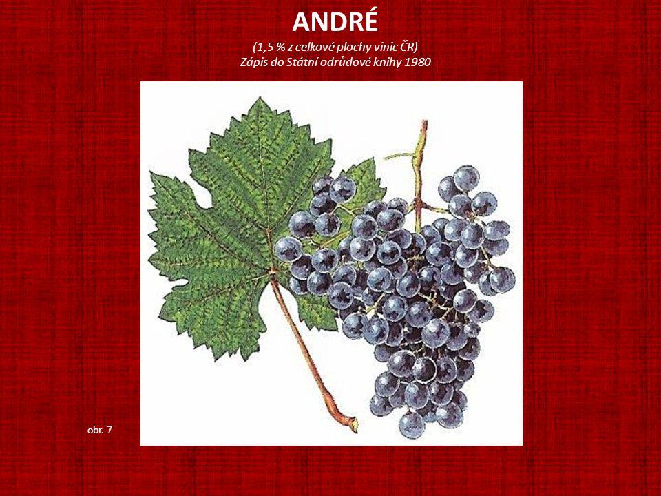 ANDRÉ (1,5 % z celkové plochy vinic ČR)