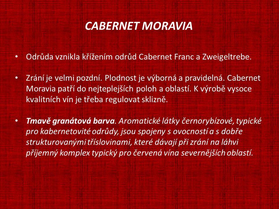 CABERNET MORAVIA Odrůda vznikla křížením odrůd Cabernet Franc a Zweigeltrebe. Zrání je velmi pozdní. Plodnost je výborná a pravidelná. Cabernet.