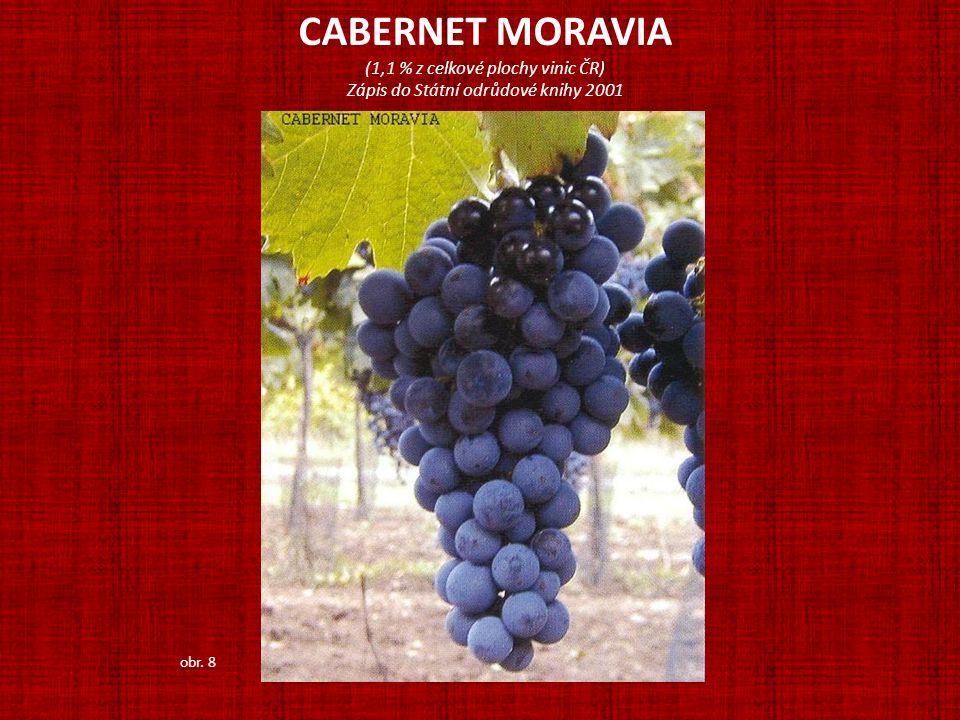 CABERNET MORAVIA (1,1 % z celkové plochy vinic ČR)