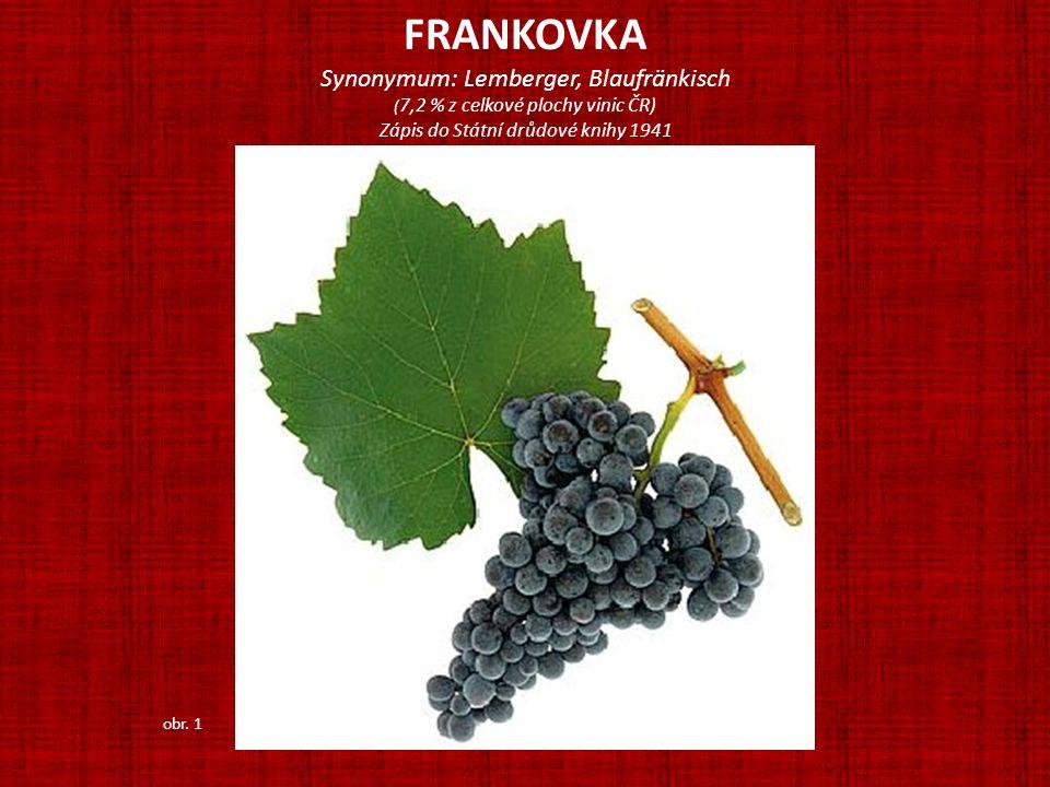 FRANKOVKA Synonymum: Lemberger, Blaufränkisch