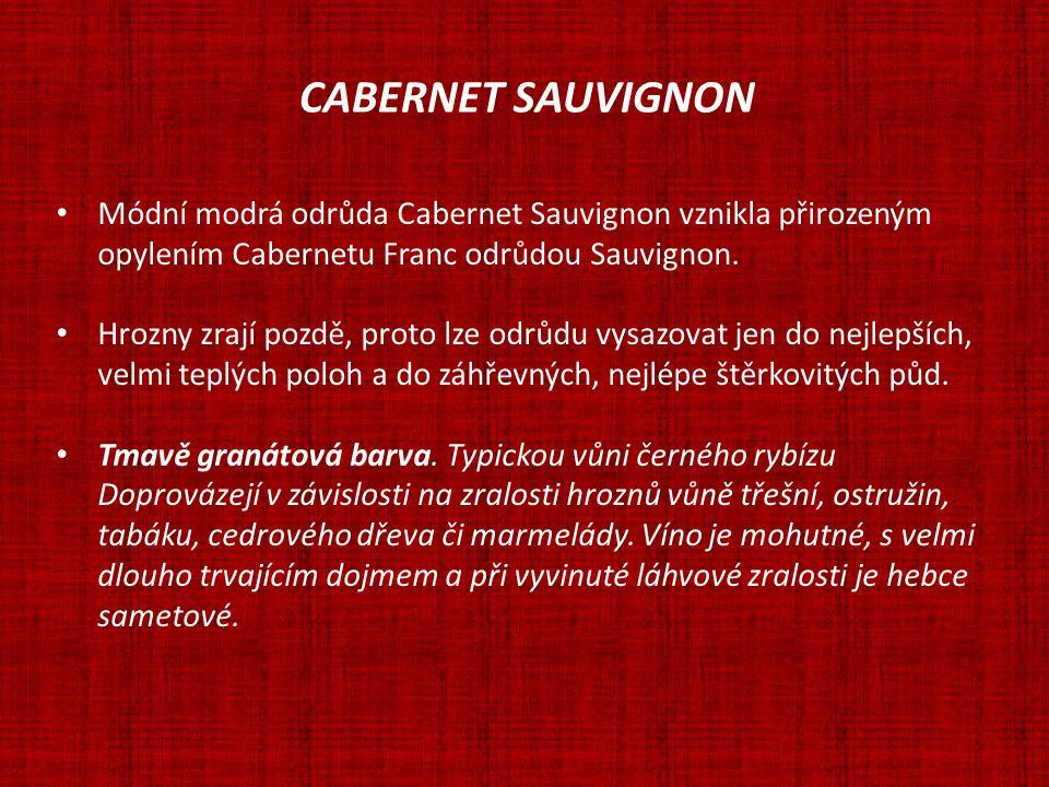 CABERNET SAUVIGNON Módní modrá odrůda Cabernet Sauvignon vznikla přirozeným. opylením Cabernetu Franc odrůdou Sauvignon.