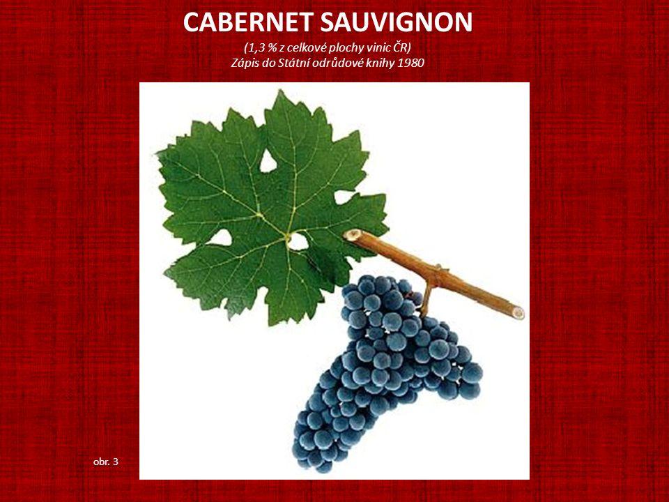 CABERNET SAUVIGNON (1,3 % z celkové plochy vinic ČR)