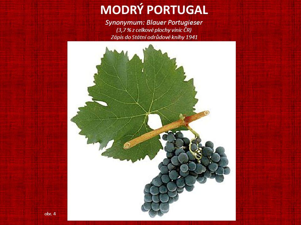 MODRÝ PORTUGAL Synonymum: Blauer Portugieser