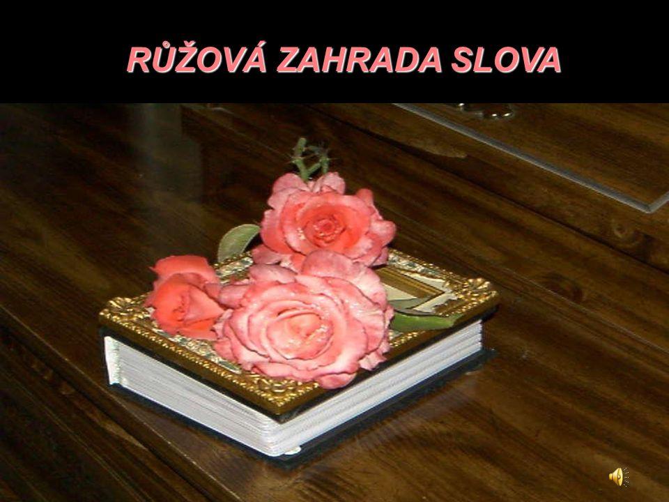 RŮŽOVÁ ZAHRADA SLOVA